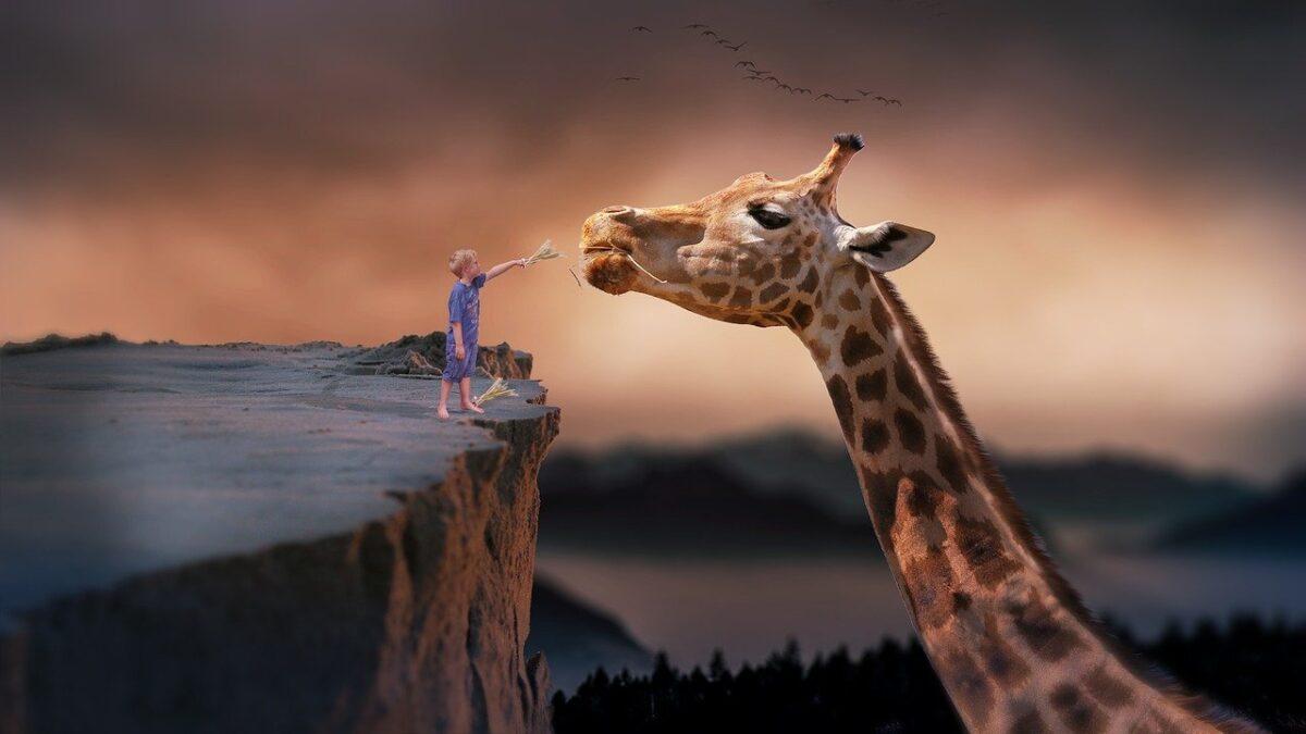 co-symbolizuje-żyrafa-w-psychologii-1200x675.jpg